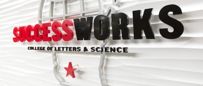 Success Works Interiorlogo 900X426
