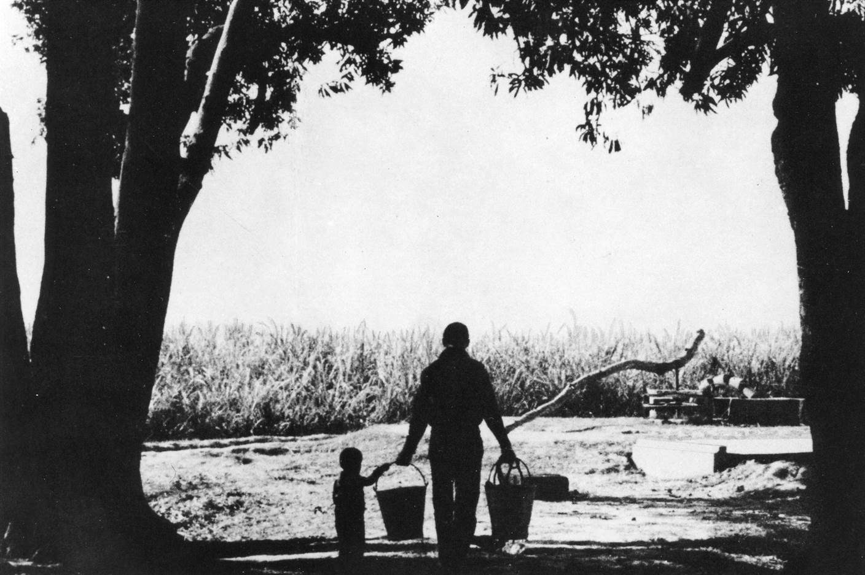 joe-elder-carrying-water
